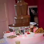 Chocolate Fountains R Us